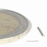 Aimants Néodyme cylindre D1 x 7 mm . Nickel-Cuivre-nickel. (Ni-Cu-Ni)